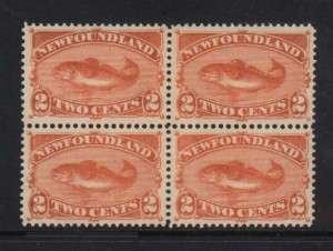 Newfoundland #48 XF/NH Block  **With Certificate**