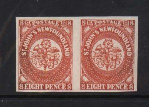 Newfoundland #8 XF/NH Pair  **With Certificate**