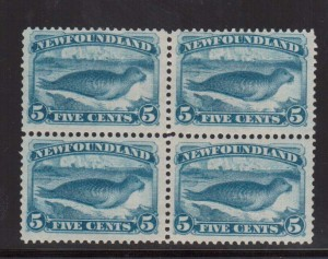 Newfoundland #53 VF Mint Block  **With Certificate**