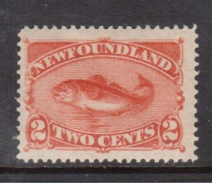 Newfoundland #48 XF/NH Gem **With Certificate**