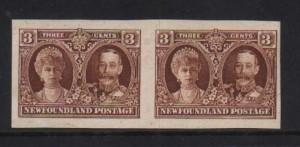 Newfoundland #165a XF/NH Imperf Pair