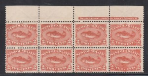Newfoundland #48b NH Mint Plate Block Of Eight